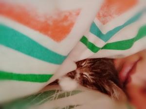 広島市中区薬研堀のヘルス AGORA(アゴラ)早朝6:00オープン!!厳選美人OLが連日多数出勤!! 写メ日記 ☆木曜日☆画像