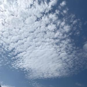 広島市中区薬研堀のヘルス AGORA(アゴラ)早朝6:00オープン!!厳選美人OLが連日多数出勤!!の写メ日記 1週間。画像