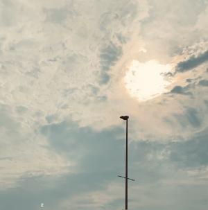 広島市中区薬研堀のヘルス AGORA(アゴラ)早朝6:00オープン!!厳選美人OLが連日多数出勤!!の写メ日記 癒し♪画像
